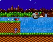 Ariciul Sonic